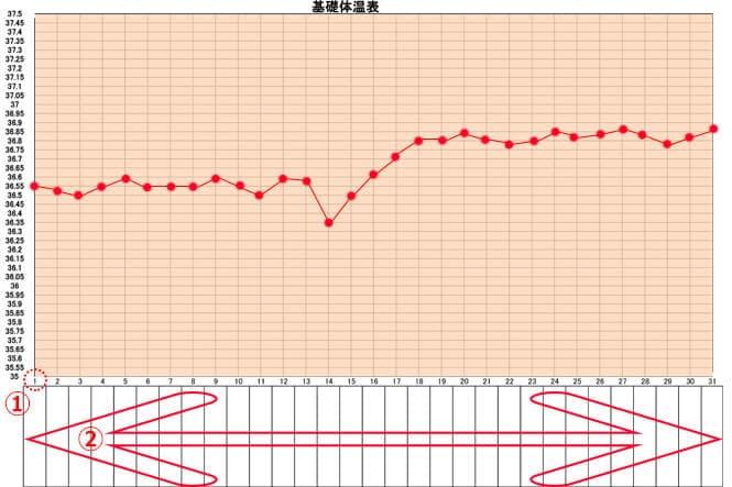 エクセルorアプリor手書き?おすすめの基礎体温表 …