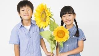 8歳の子の発達・成長・発育など特徴まとめ