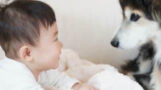 ペットは一番の友達!? 子どもがいる家庭にオススメの犬種9選