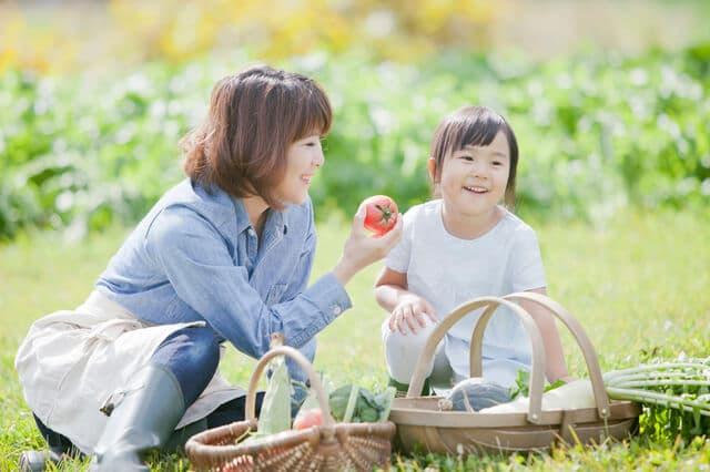 家庭菜園を楽しむ親子