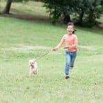 お散歩でコミュニケーション! 子どもと一緒に犬を飼うメリット
