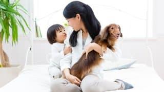 先に飼っていたペットと赤ちゃん、仲良く暮らすためにはどうすればいい?