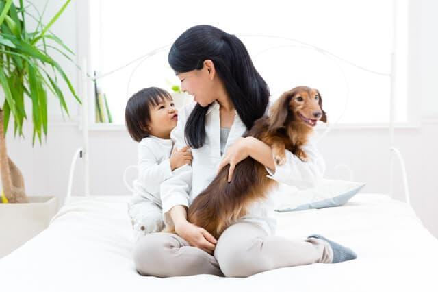 ペットと赤ちゃん