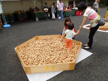 新宿中央公園の木育イベント