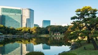 子供と一緒に一日中遊べる東京のおすすめ公園5選+周辺お役立ち情報まとめ