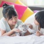 子どもが猫を拾ったらどうすればいい? 子どもへの伝え方や対処方法