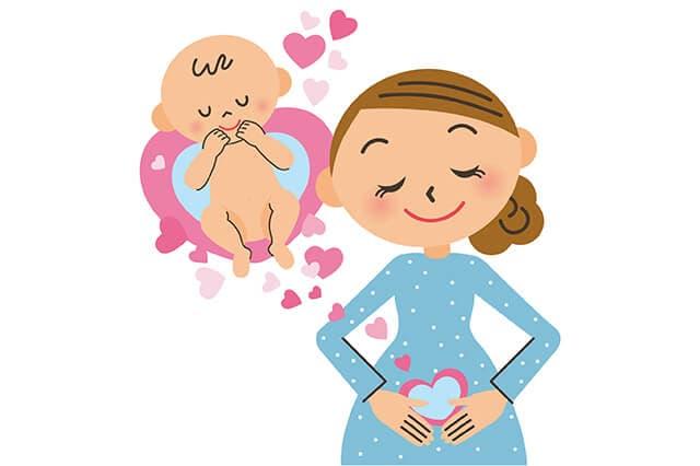 胎児とお母さん