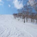 親子で楽しもう!北海道のおすすめスキー場6選
