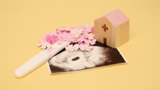 経膣超音波検査で子宮の詳しい状態を知っておこう!検査方法、注意点は?