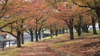 赤羽駅(東京都北区)のおすすめ産婦人科3選