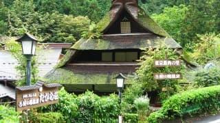 温泉で妊娠力アップ!東京都の子宝温泉3選
