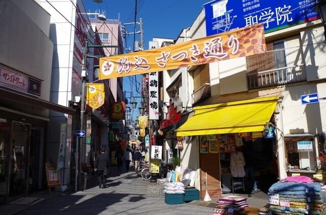 駒込駅(東京都豊島区)のおすすめ産婦人科5選