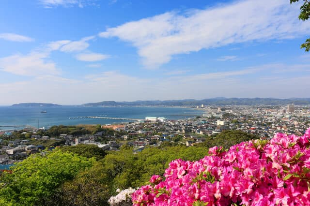 館山城からの館山港の眺め