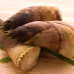 【レシピ付き】子どもに食べさせたい4月が旬の野菜
