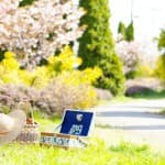 【レシピあり】家族でお花見!桜の下で食べたいお花見弁当作り方!