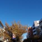 桜新町駅・用賀駅(東京都世田谷区)の産婦人科5選