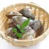 【レシピ付き】子どもに食べさせたい3月が旬の魚介