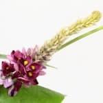 おなかの脂肪を減らす!?今話題のかずらの花由来イソフラボン配合サプリ・食品を徹底比較!