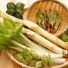 【レシピ付き】子どもに食べさせたい3月が旬の野菜