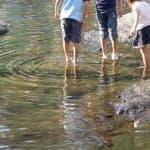 川遊び中に溺れることも!川や池に子どもだけで近づくのは危険がいっぱい!