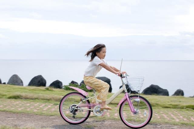 命が関わる重大な事故にも!小学生が自転車に乗るときに注意 ...