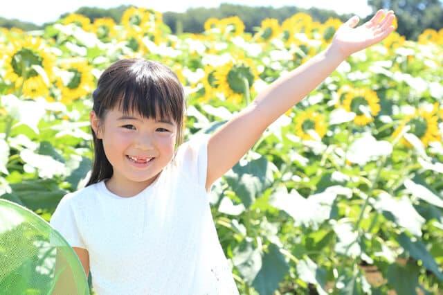 ひまわり畑にいる女の子