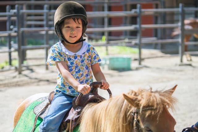 馬にのる子ども