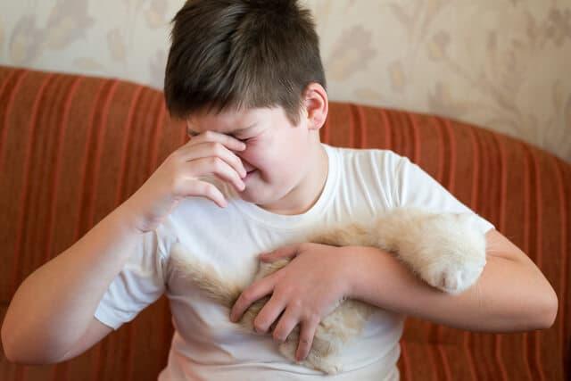 猫アレルギーの男の子