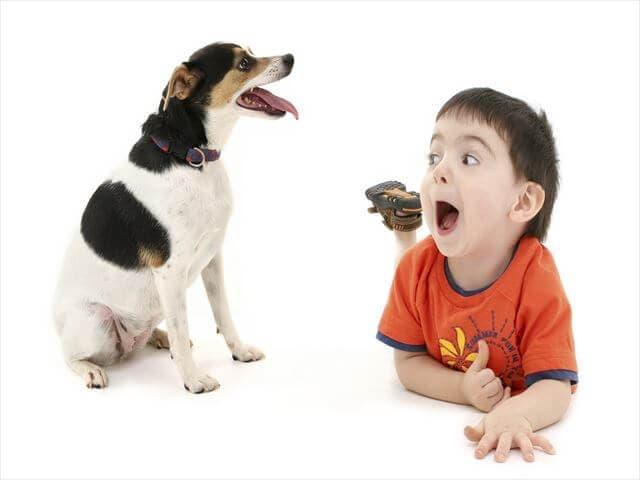 3歳の男の子と犬