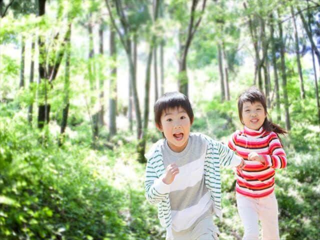 山の中で遊ぶ子ども