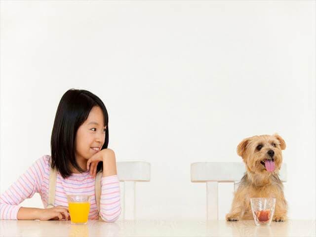 飲み物を飲む犬と女の子