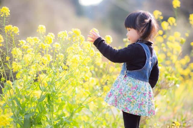 お花畑の子ども