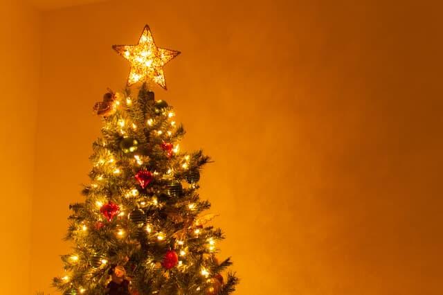 イルミネーションされているクリスマスツリー