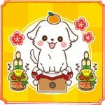 年賀状印刷サービスのおすすめ10選~写真入り年賀状を安く・簡単に・かわいく作ろう!~