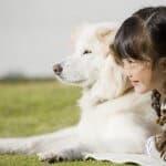 命の大切さを知る。保護犬を家族に迎えよう!