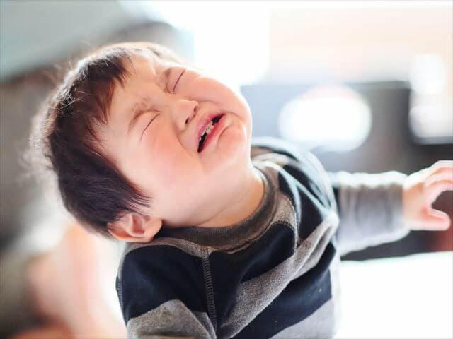 歯が生えてきた赤ちゃん
