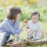 楽しく食育!初心者でも簡単 子どもと始める「家庭菜園」