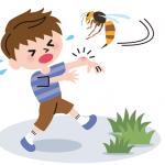 子どもが蜂に刺されたら、まず何をしたらいい?正しい応急処置のやり方