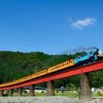 トーマス好きの子どもが熱狂!静岡県できかんしゃトーマスに乗る方法