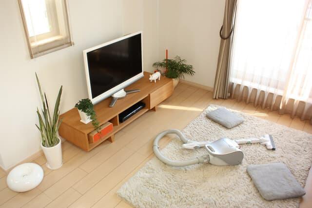 掃除機とテレビ