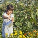 子どもと四季を感じよう。一緒にできるおすすめベランダガーデニング