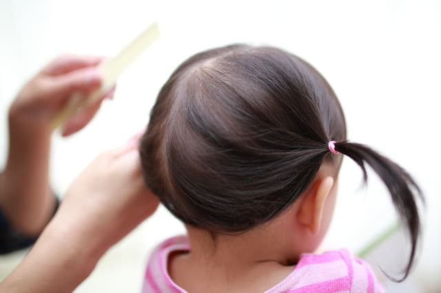 髪の毛で筆を作る