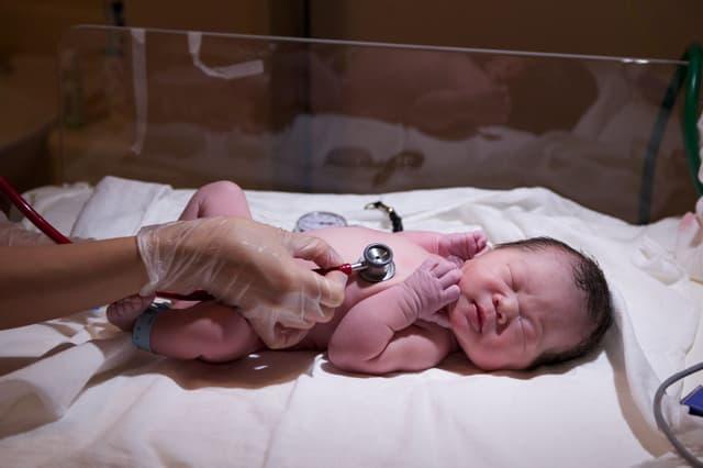 新生児の診察