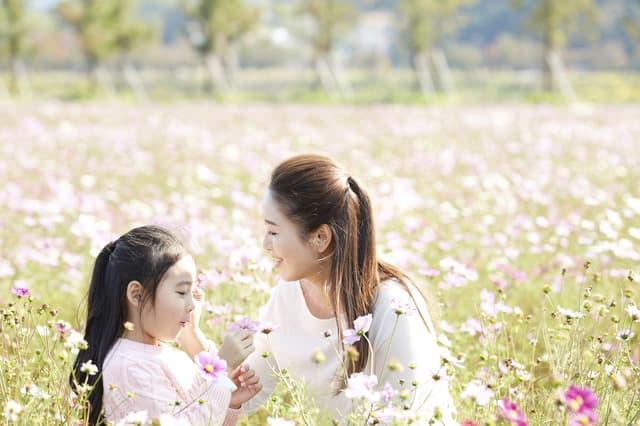 花畑の家族