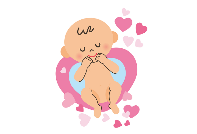 胎児の様子