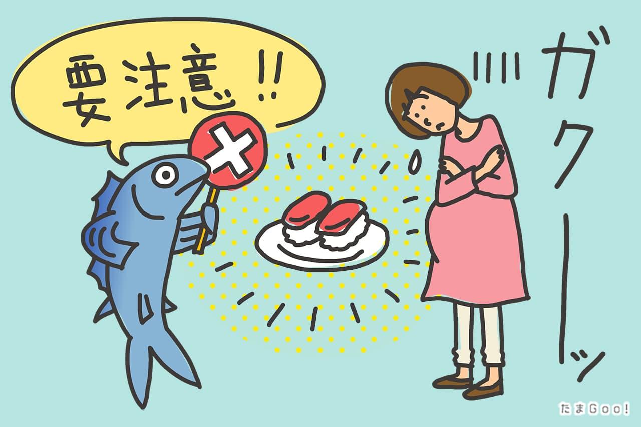 要注意の魚