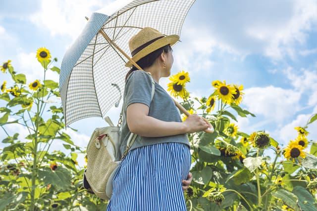 妊婦の旅行