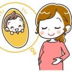 胎盤ってどんな役割をしているの? よい胎盤を作るには?