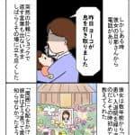 あの日 桜の下で・・・:今夜は納豆ご飯だけでいいですか?【第40回】