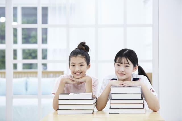 図鑑と姉妹